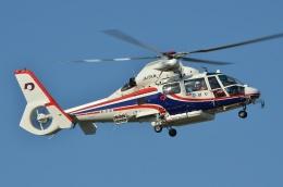 航空フォト:JA15KM 熊本県防災消防航空隊 AS365/565 Dauphin 2/Panther