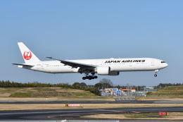 ポン太さんが、成田国際空港で撮影した日本航空 777-346/ERの航空フォト(飛行機 写真・画像)