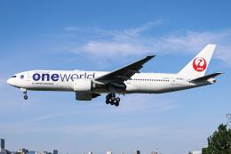 代打の切札さんが、伊丹空港で撮影した日本航空 777-246/ERの航空フォト(飛行機 写真・画像)