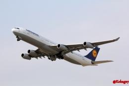 湖景さんが、成田国際空港で撮影したルフトハンザドイツ航空 A340-313Xの航空フォト(飛行機 写真・画像)