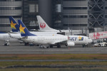 kuro2059さんが、羽田空港で撮影したスカイマーク 737-8HXの航空フォト(飛行機 写真・画像)