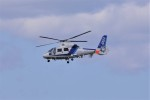 kumagorouさんが、仙台空港で撮影したオールニッポンヘリコプター AS365N2 Dauphin 2の航空フォト(飛行機 写真・画像)