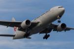 武彩航空公司(むさいえあ)さんが、羽田空港で撮影した日本航空 777-289の航空フォト(飛行機 写真・画像)