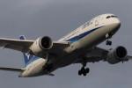 武彩航空公司(むさいえあ)さんが、羽田空港で撮影した全日空 787-8 Dreamlinerの航空フォト(飛行機 写真・画像)