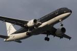 武彩航空公司(むさいえあ)さんが、羽田空港で撮影したスターフライヤー A320-214の航空フォト(飛行機 写真・画像)