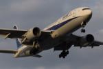 武彩航空公司(むさいえあ)さんが、羽田空港で撮影した全日空 777-281の航空フォト(飛行機 写真・画像)