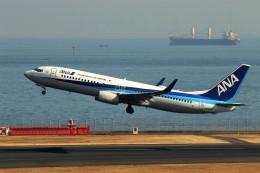 にしやんさんが、羽田空港で撮影した全日空 737-881の航空フォト(飛行機 写真・画像)