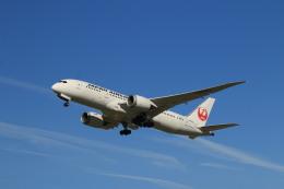 航空フォト:JA829J 日本航空 787-8 Dreamliner