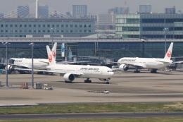 Hiro-hiroさんが、羽田空港で撮影した日本航空 777-346/ERの航空フォト(飛行機 写真・画像)