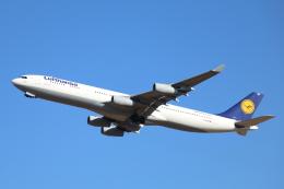 mogusaenさんが、成田国際空港で撮影したルフトハンザドイツ航空 A340-313Xの航空フォト(飛行機 写真・画像)