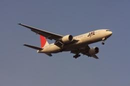 ゆう.さんが、羽田空港で撮影した日本航空 777-246/ERの航空フォト(飛行機 写真・画像)