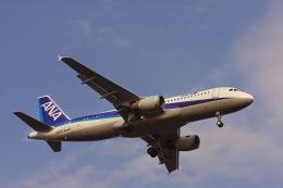 ゆう.さんが、羽田空港で撮影した全日空 A320-211の航空フォト(飛行機 写真・画像)