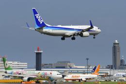 パンダさんが、成田国際空港で撮影した全日空 737-881の航空フォト(飛行機 写真・画像)