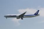 ANA744Foreverさんが、羽田空港で撮影した全日空 777-381の航空フォト(飛行機 写真・画像)