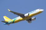 ANA744Foreverさんが、成田国際空港で撮影したセブパシフィック航空 A320-214の航空フォト(飛行機 写真・画像)