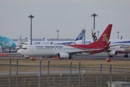 OS52さんが、成田国際空港で撮影した深圳航空 737-87Lの航空フォト(飛行機 写真・画像)