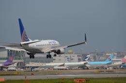 Blossomuserさんが、福岡空港で撮影したユナイテッド航空 737-724の航空フォト(飛行機 写真・画像)