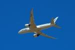 杉の裏さんが、成田国際空港で撮影したZIPAIR 787-8 Dreamlinerの航空フォト(飛行機 写真・画像)