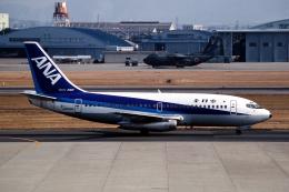 なごやんさんが、名古屋飛行場で撮影した全日空 737-281/Advの航空フォト(飛行機 写真・画像)