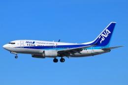 ぽっぽさんが、伊丹空港で撮影した全日空 737-781の航空フォト(飛行機 写真・画像)