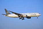 ちゃぽんさんが、成田国際空港で撮影したユナイテッド航空 777-222/ERの航空フォト(飛行機 写真・画像)