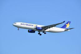 kotaちゃんさんが、羽田空港で撮影したスカイマーク A330-343Xの航空フォト(飛行機 写真・画像)