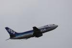 MA~RUさんが、成田国際空港で撮影したANAウイングス 737-54Kの航空フォト(飛行機 写真・画像)
