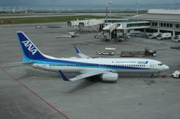 Rsaさんが、那覇空港で撮影した全日空 737-881の航空フォト(飛行機 写真・画像)