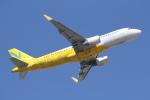 ANA744Foreverさんが、成田国際空港で撮影したバニラエア A320-214の航空フォト(飛行機 写真・画像)