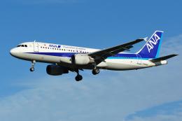 saoya_saodakeさんが、成田国際空港で撮影した全日空 A320-211の航空フォト(飛行機 写真・画像)