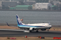 湖景さんが、羽田空港で撮影した全日空 737-881の航空フォト(飛行機 写真・画像)