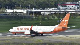 パンダさんが、成田国際空港で撮影したチェジュ航空 737-8ALの航空フォト(飛行機 写真・画像)