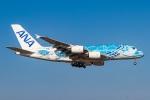 契丹さんが、成田国際空港で撮影した全日空 A380-841の航空フォト(飛行機 写真・画像)