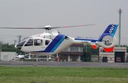 かぐさんが、東京ヘリポートで撮影したユーロヘリ EC135T2の航空フォト(飛行機 写真・画像)