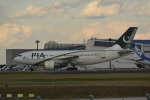 LEGACY-747さんが、成田国際空港で撮影したパキスタン国際航空 A310-325/ETの航空フォト(飛行機 写真・画像)
