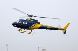 かぐさんが、東京ヘリポートで撮影したエアロスペースナガノ AS350B Ecureuilの航空フォト(飛行機 写真・画像)