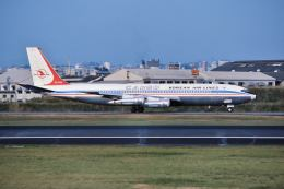 パール大山さんが、伊丹空港で撮影した大韓航空 707-338Cの航空フォト(飛行機 写真・画像)
