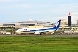 Hiro Satoさんが、成田国際空港で撮影した全日空 737-881の航空フォト(飛行機 写真・画像)