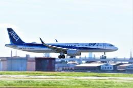 Hiro Satoさんが、羽田空港で撮影した全日空 A321-272Nの航空フォト(飛行機 写真・画像)