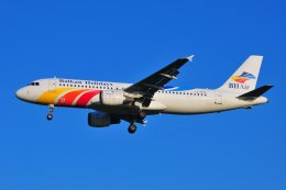 islandsさんが、アムステルダム・スキポール国際空港で撮影したバルカンホリデイズ A320-211の航空フォト(飛行機 写真・画像)