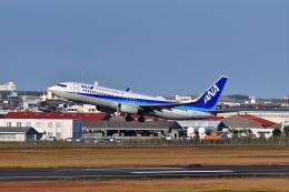 ひこ☆さんが、宮崎空港で撮影した全日空 737-881の航空フォト(飛行機 写真・画像)