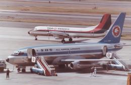 rokko2000さんが、伊丹空港で撮影した全日空 737-281の航空フォト(飛行機 写真・画像)