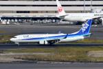 kuro2059さんが、羽田空港で撮影した全日空 737-881の航空フォト(飛行機 写真・画像)