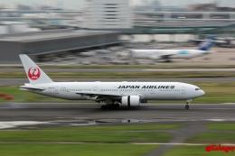 湖景さんが、羽田空港で撮影した日本航空 777-289の航空フォト(飛行機 写真・画像)