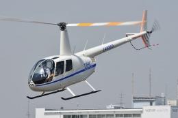 ブルーさんさんが、東京ヘリポートで撮影したディーエイチシー R44の航空フォト(飛行機 写真・画像)