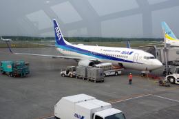 apphgさんが、新千歳空港で撮影した全日空 737-881の航空フォト(飛行機 写真・画像)