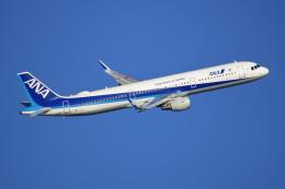 NANASE UNITED®さんが、羽田空港で撮影した全日空 A321-211の航空フォト(飛行機 写真・画像)