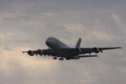 ゆう.さんが、成田国際空港で撮影したエールフランス航空 A380-861の航空フォト(飛行機 写真・画像)