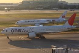 ゆう.さんが、羽田空港で撮影した日本航空 777-246の航空フォト(飛行機 写真・画像)
