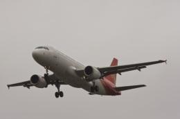ゆう.さんが、成田国際空港で撮影した深圳航空 A320-214の航空フォト(飛行機 写真・画像)